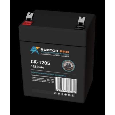 Восток СК-1205 AGM аккумулятор для ИБП