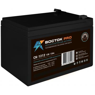 Восток СК-1212 AGM аккумулятор для ИБП