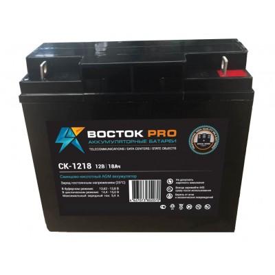 Восток СК-1218 AGM аккумулятор для ИБП